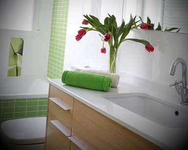 banheiros decorados plantas ideias