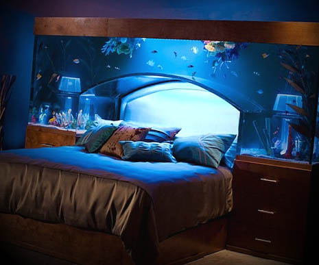 cama aquario aquarium bed