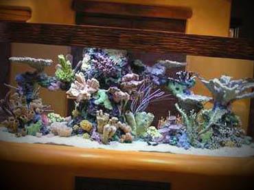 decoracao-com-aquarios