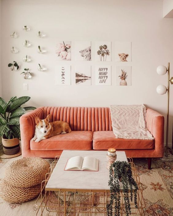 decoracao interior ideias 5
