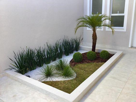 decoracao jardim externo plantas