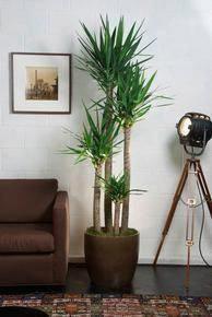 decoracao plantas artificiais 8