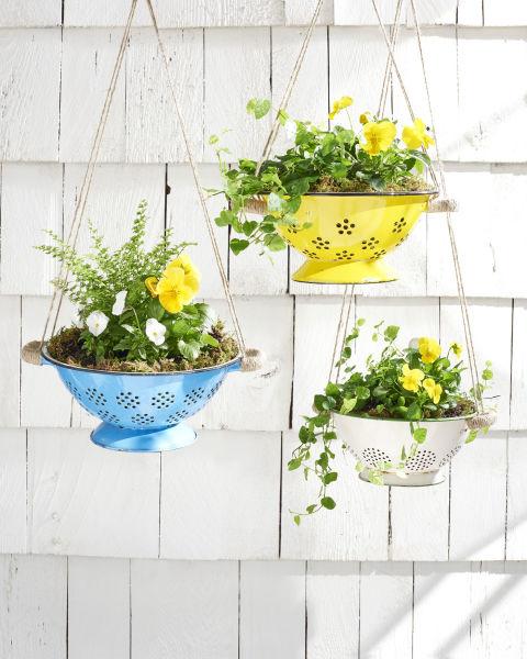 decorar com plantas suspensas 2
