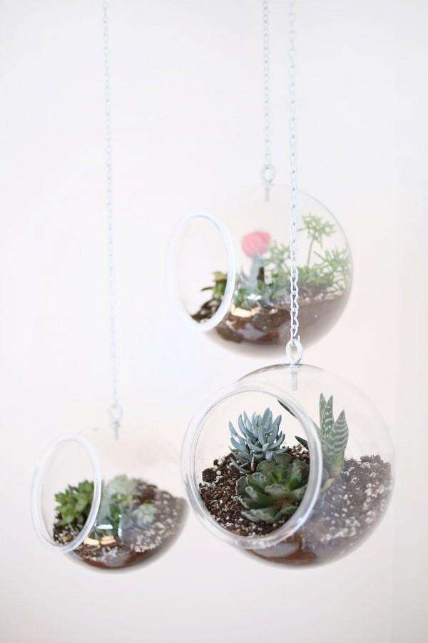 decorar com plantas suspensas 3