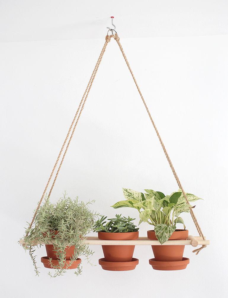 decorar com plantas suspensas 8