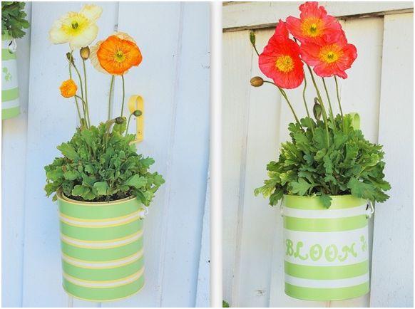 decorar com plantas suspensas 9