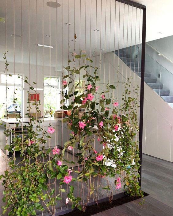 divisao ambientes cordas flores