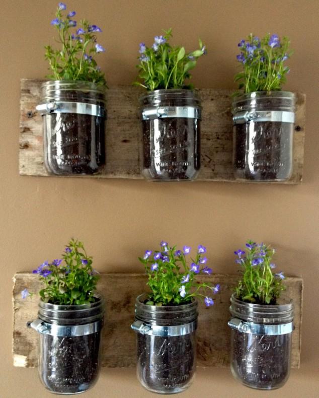 diy plantas em casa 15