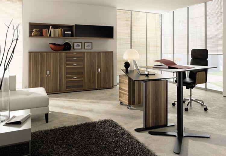 escritorio profssional 3