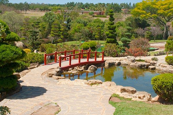 foto jardim japones