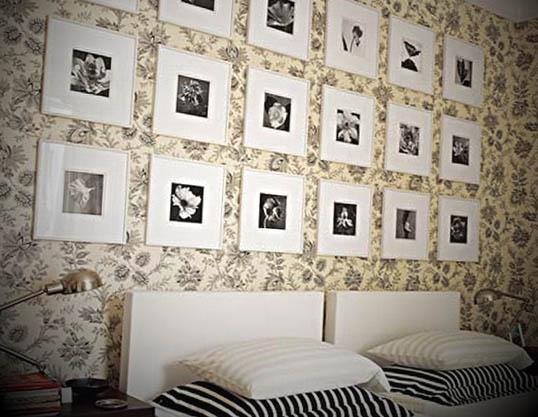 fotos branco e preto