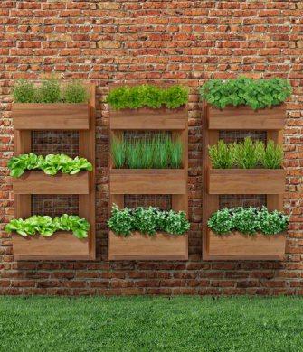 fotos de jardim vertical