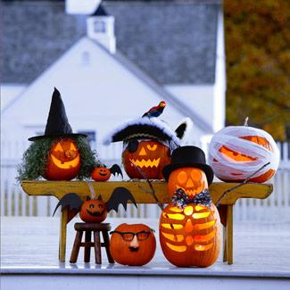 halloween aboboras