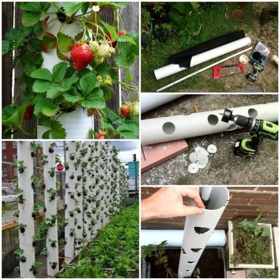 ideias de jardinagem com tubos em pvc