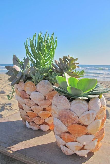 ideias decoracao vasos conchas