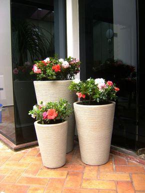 ideias decoracao vasos entrada