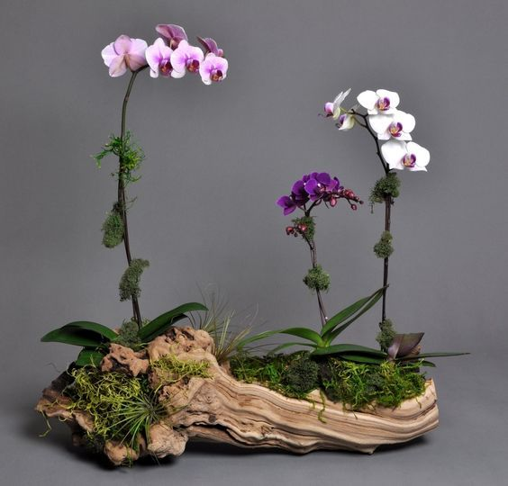 ideias decoracao vasos madeira