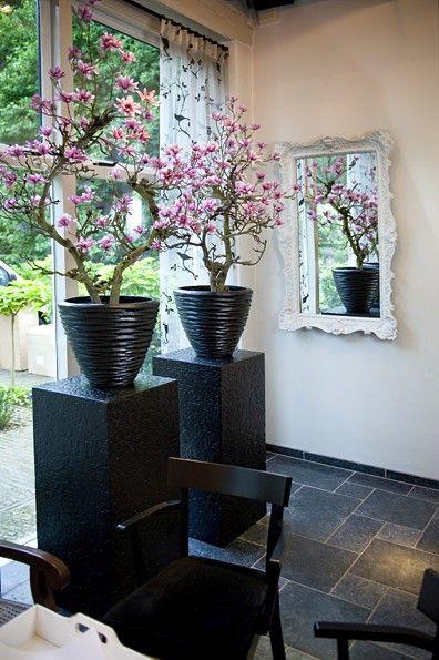 ideias decoracao vasos suporte japonesas