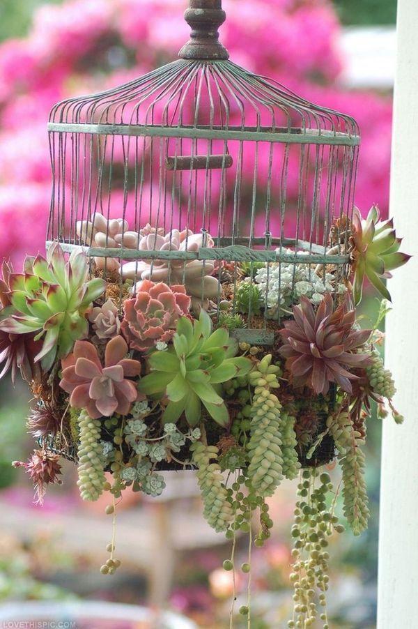 ideias para jardim 15
