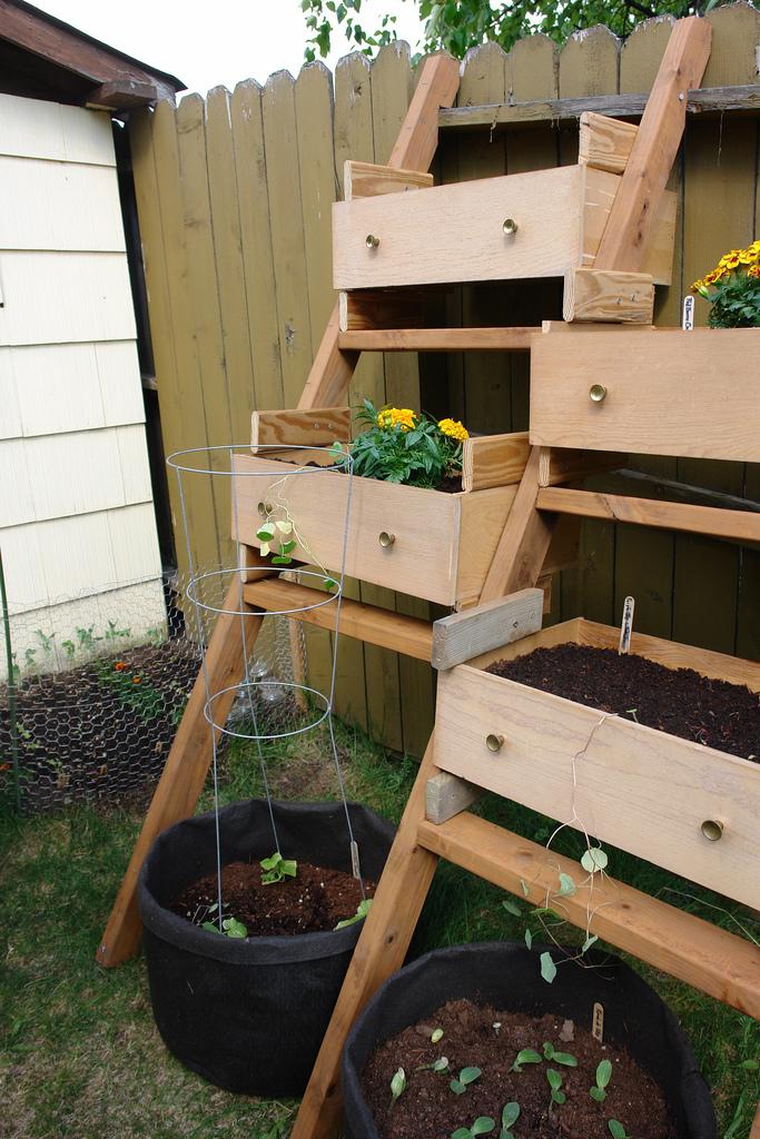 ideias para jardim 5