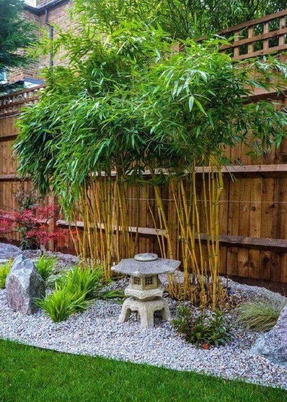 jardim japones 6