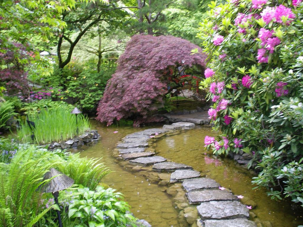 jardim japones lago