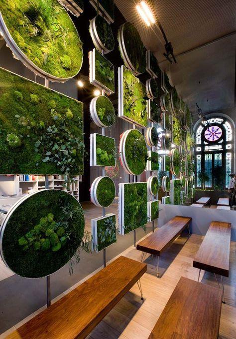 jardim vertical 4