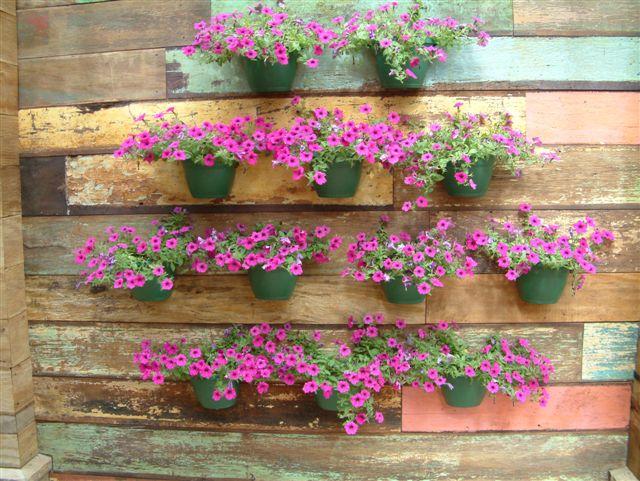 jardim vertical fotos