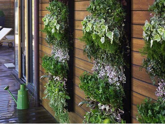 jardim vertical simples e barato
