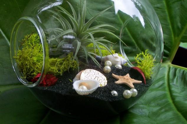jardins miniatura 3