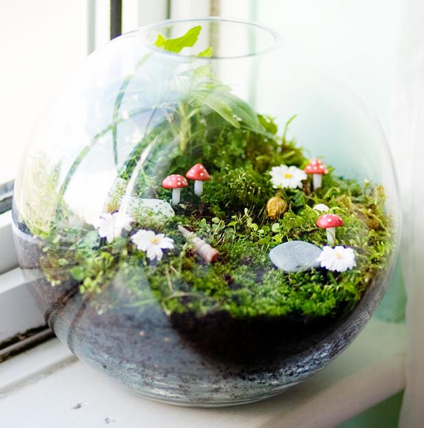 jardins miniatura 4
