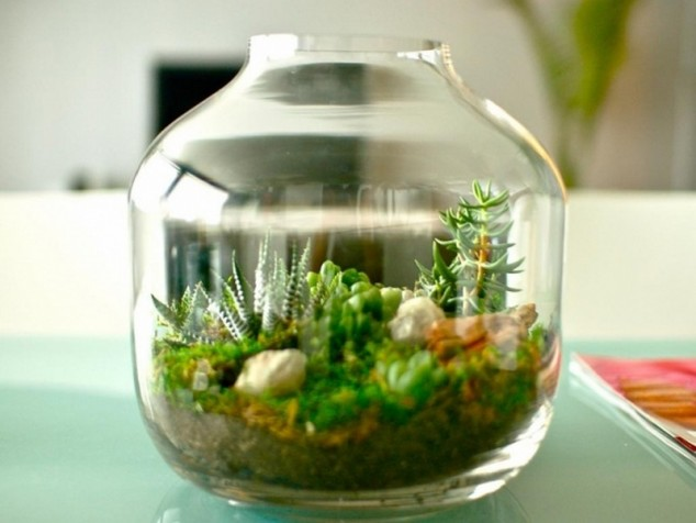 jardins miniatura 6