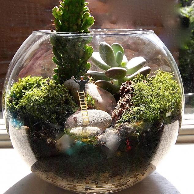 jardins miniatura 7