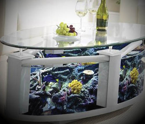 luxury glass aquarium
