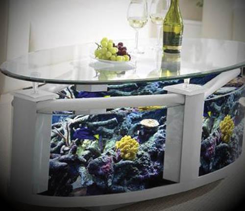 luxury-glass-aquarium