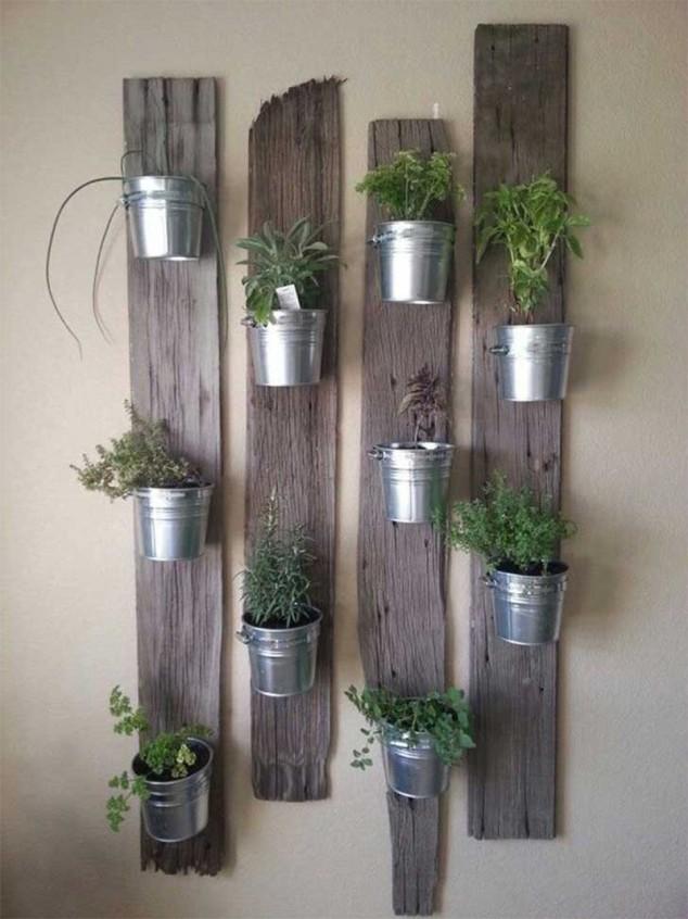plantas dentro de casa 9