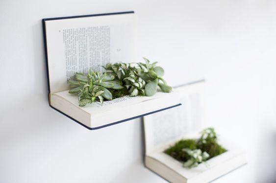 plantas plantadas livros 1