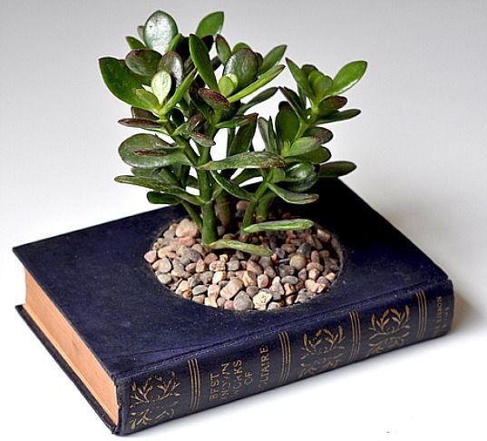 plantas plantadas livros 2