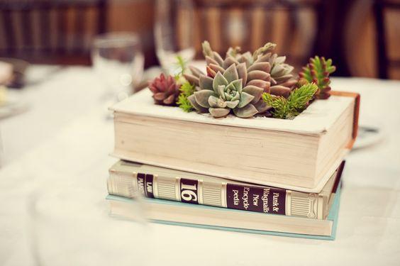 plantas plantadas livros 6
