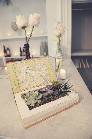 plantas plantadas livros 7