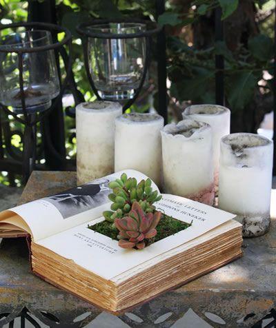 plantas plantadas livros 8