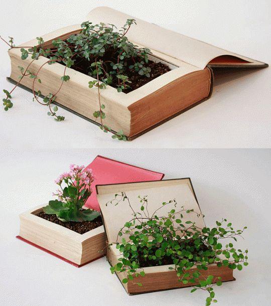 plantas plantadas livros