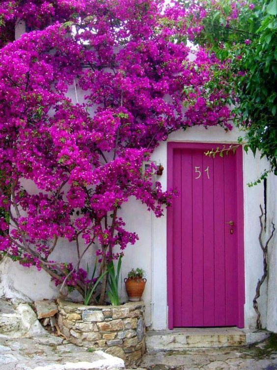 porta fachada colorida rosa