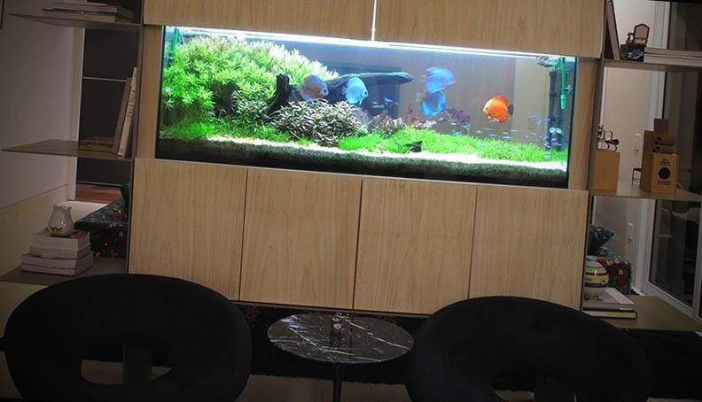 projetos de aquario