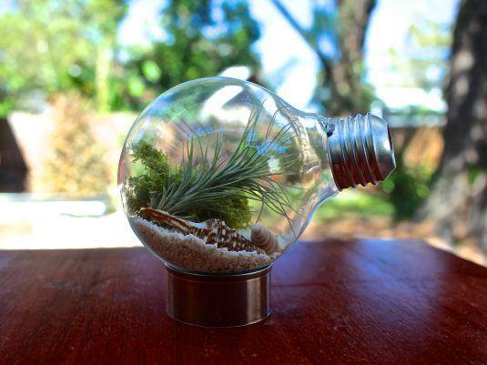 reciclar lampadas 1