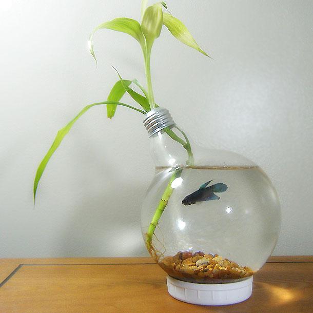 reciclar lampadas 22