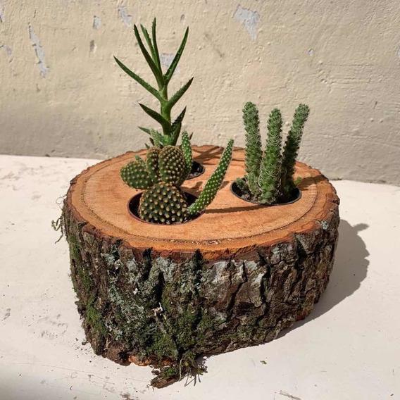 vasos criativos com tocos de madeira 3