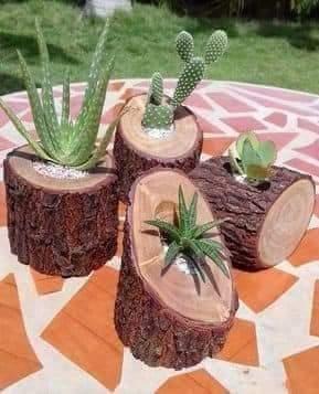 vasos criativos com tocos de madeira 4