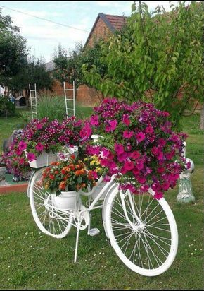 vasos objetos velhos bicicleta