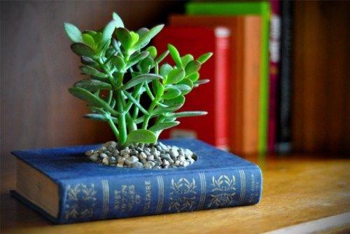 vasos objetos velhos livros